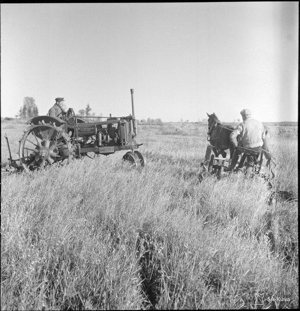 Kolhoosin kauraa korjataan Riiskassa traktorein sekä hevos- ja vankivoimin.